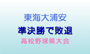 東海大浦安準決勝で敗退 夏の高校野球県大会