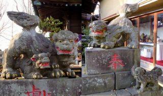 浦安点描:安産祈願の狛犬