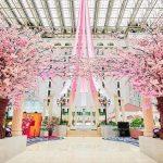 アトリウムロビーで桜を楽しもう! 東京ベイ舞浜ホテル クラブリゾート