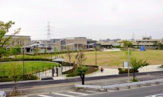 浦安公園、一部オープン 芝生広場・ドッグラン、7月オープン