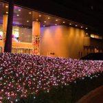浦安の輝くイルミネーション 各施設でクリスマスイベント満載