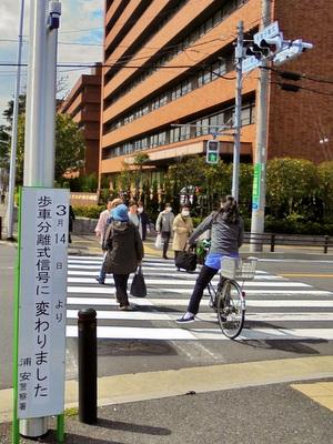 歩車分離方式信号