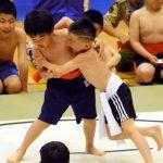 第31回わんぱく相撲浦安場所 市内の小学生力士310人が熱戦